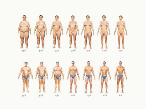 ВОЗ рекомендации по здоровому питанию. Низкоуглеводная диета.  Рекомендации по здоровому питанию (воз, 2003).