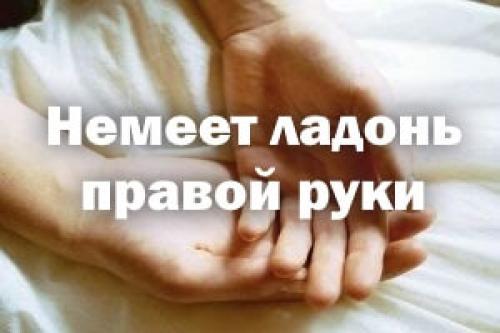 Почему немеет правая рука от плеча до пальцев причины. Немеет ладонь правой руки – причины