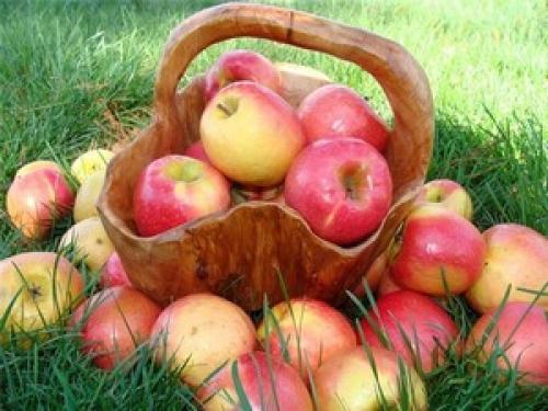 Яблоко на ужин и доктор не нужен на английском.