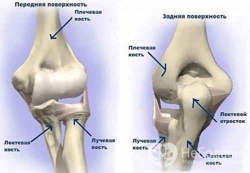 После удара боль в локте. Анатомические особенности