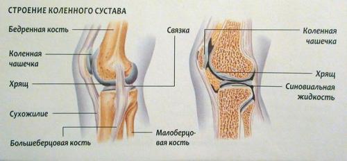 Боль в колене, как иголкой. Боль в коленном суставе: причины, лечение, почему болят колени, что с этим делать, как и чем их лечить