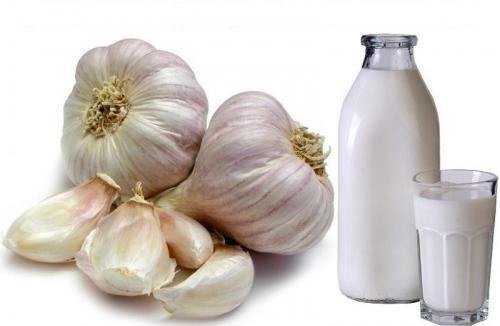 Молоко с чесноком от давления. Чеснок, сваренный в молоке, от давления: рецепт