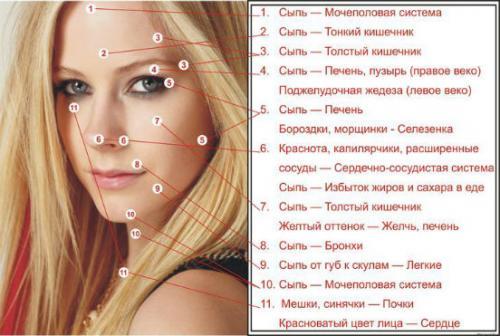 Маски для жирной кожи лица от прыщей в домашних условиях. Маски для жирной кожи — очень действенные рецепты и средства, которые способны избавить вас от прыщей