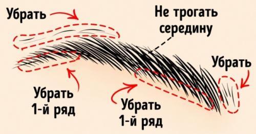 Как сделать брови гуще. 10хитростей, которые помогут создать идеальные брови