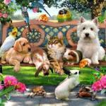 Заговор - оберег, чтоб домашние животные не болели: этот заговор можно читать на любых домашних животных.