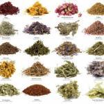 Прованские травы: рецепты смесей.