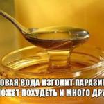 Медовая вода изгонит паразитов, поможет похудеть и много другое.