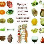 Замечательные подсказки, какие плоды полезны для каких частей тела!